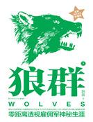 狼群2(揭示神秘雇佣军生涯)