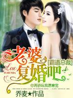 霸道总裁:老婆复婚吧
