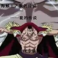 海贼王之龍的传说