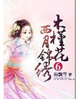 木槿花西月锦绣6